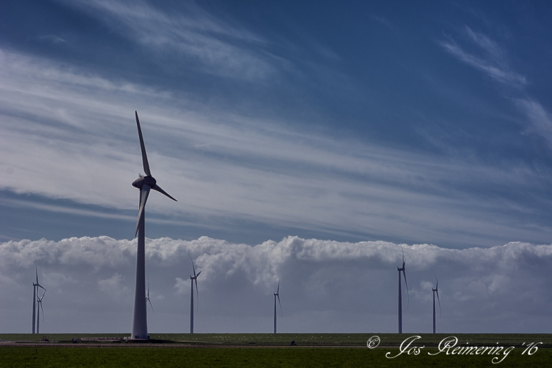 Dutch windmills 2.0   _DSC5909 85-bewerkt-1.jpg